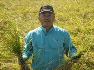 稲刈り1(H21).jpg
